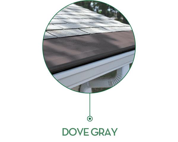 dove-gray